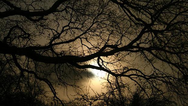 Annabel Lee, l'ultima poesia completa di Edgar Allan Poe