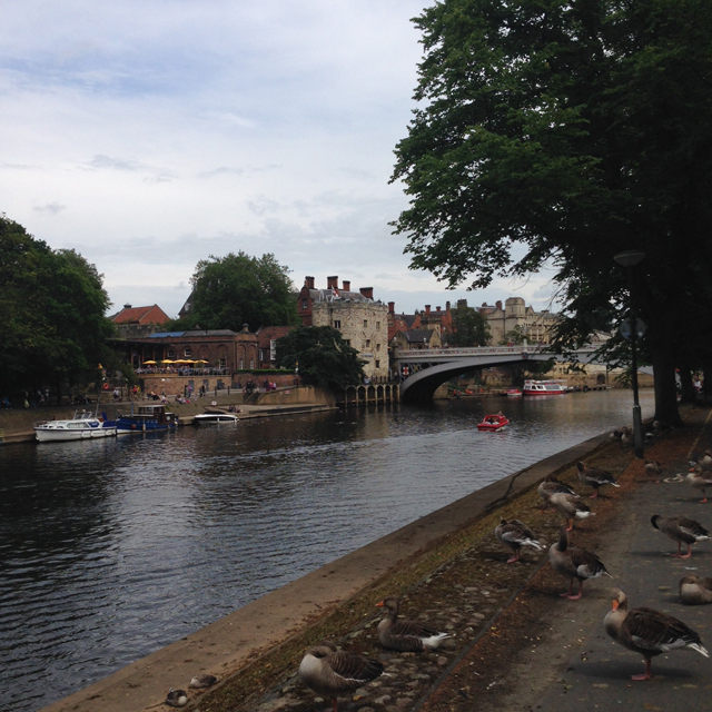 Il fiume Ouse a York