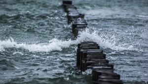 Il mare e le poesie di José Saramago