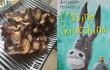 L'asino Giacchino di Alessandro Petruccelli e il salame di cioccolato