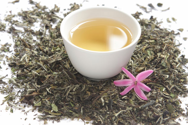 Il principio passione di Mancuso e il tè bianco aghi d'argento