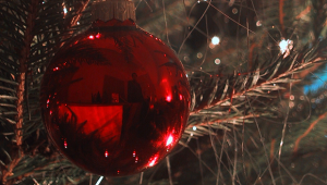 Il Natale di Martin, emozioni dell'avvento firmate Lev Tolstoj